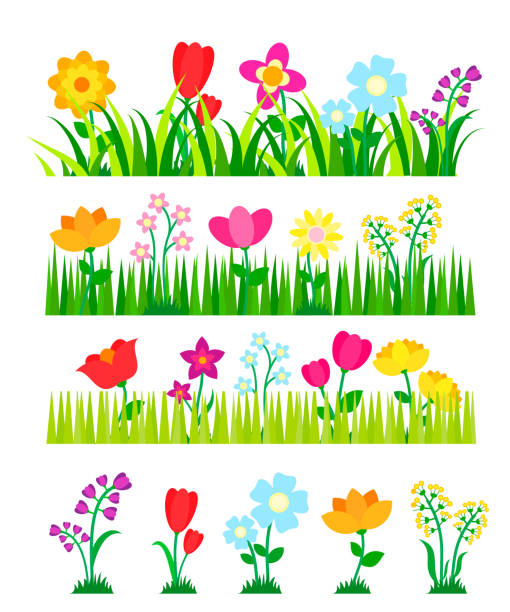 Different flowers collection with green grass. Flowerbeds set in the garden, vector illustration Different flowers collection with green grass. Flowerbeds set in the garden, vector illustration flowerbed stock illustrations
