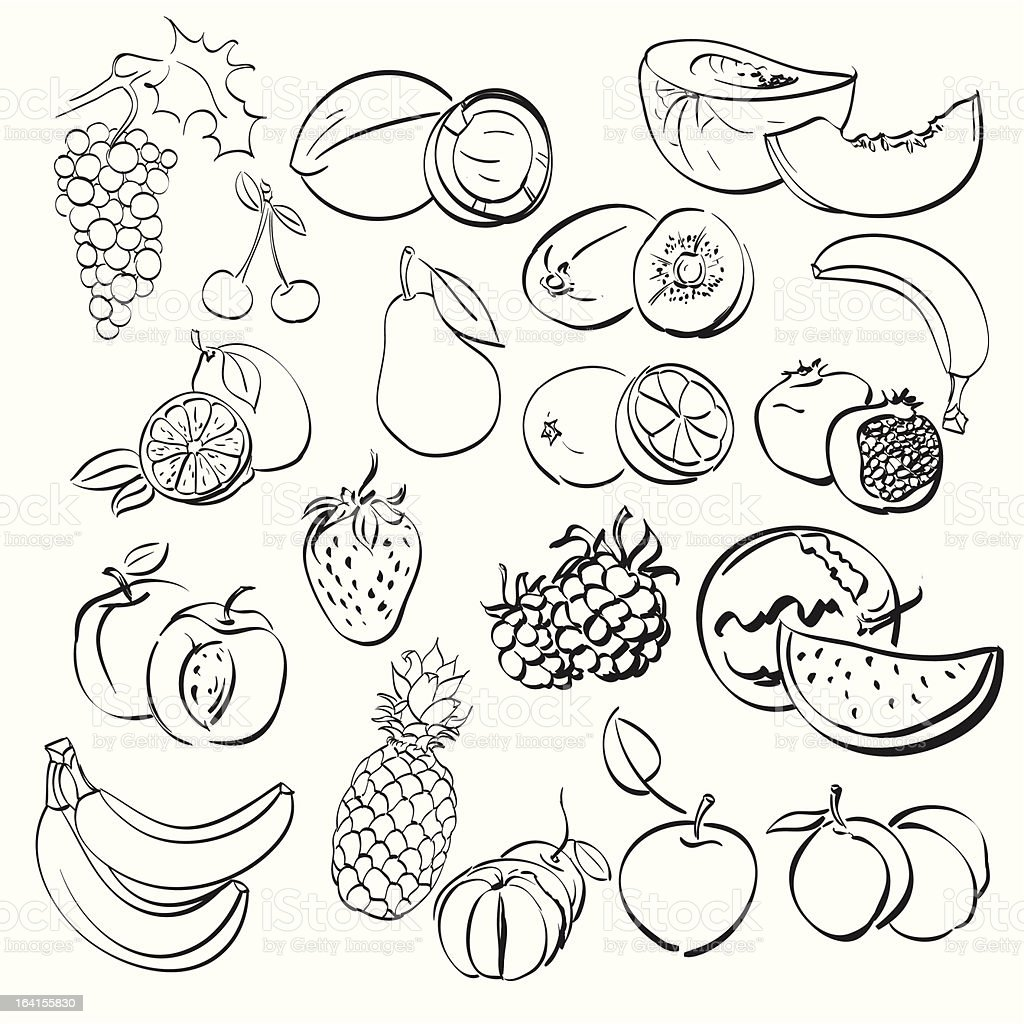 different fruits set . vector illustration royalty-free stock vector art