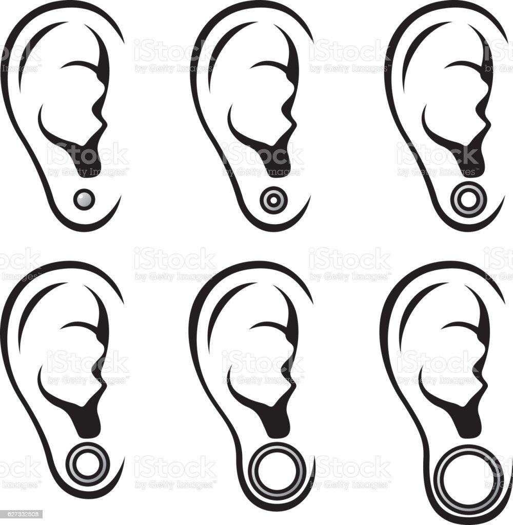 Different gauges of earrings vector art illustration