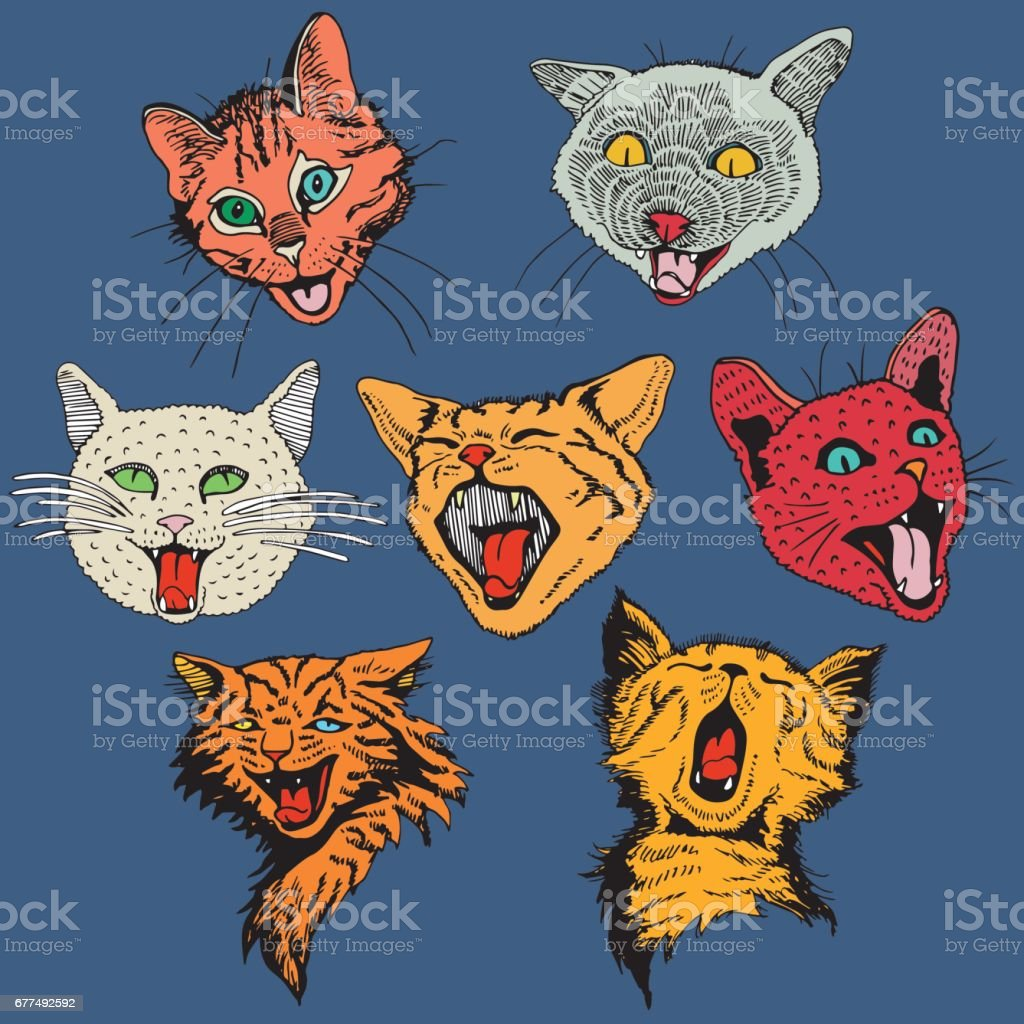 Different Hand Drawn Heads Cat. vector art illustration