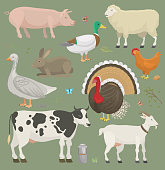 Different home farm vector animals and birds like cow, sheep, pig, duck set illustration. Cartoon mammal comic farmers animals design agriculture. Colorful farmer character isolated on white