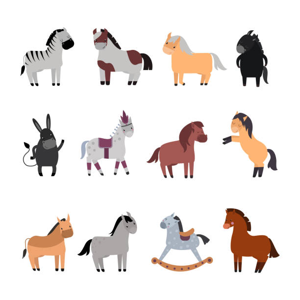 different horses breed vector set. - pony stock illustrations