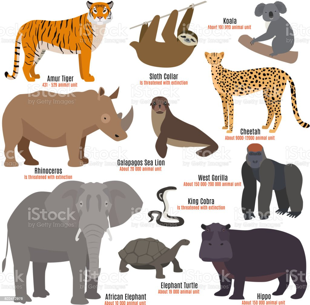 Different kinds deleted species die out rare uncommon red book animals dying wild nature characters vector illustration vector art illustration