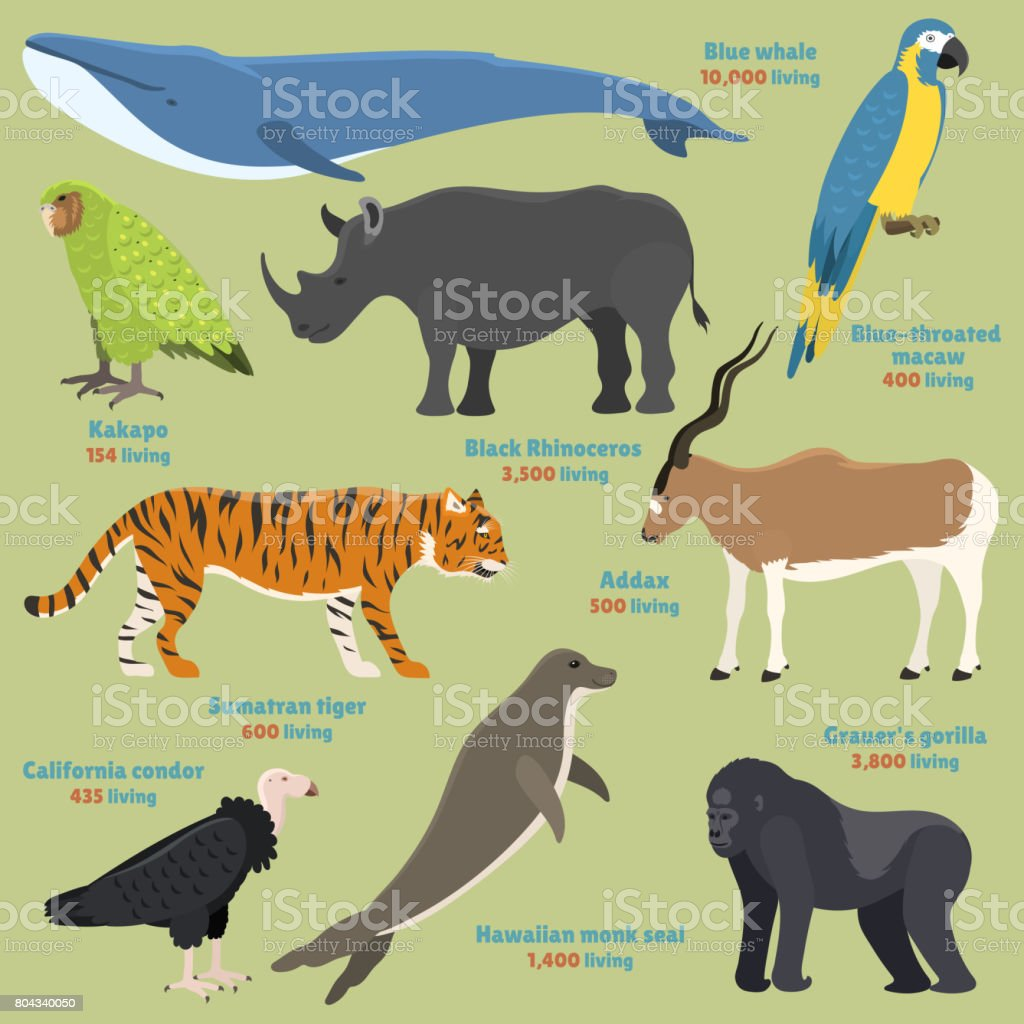 Different kinds deleted species dying rare uncommon red book animals characters vector illustration vector art illustration