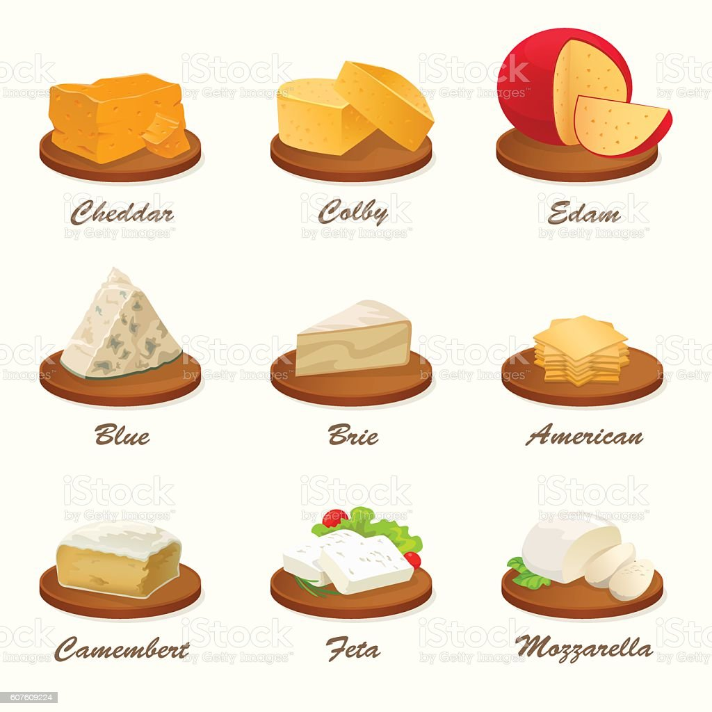Different kinds of cheese on cutting board. Vector illustration. vector art illustration