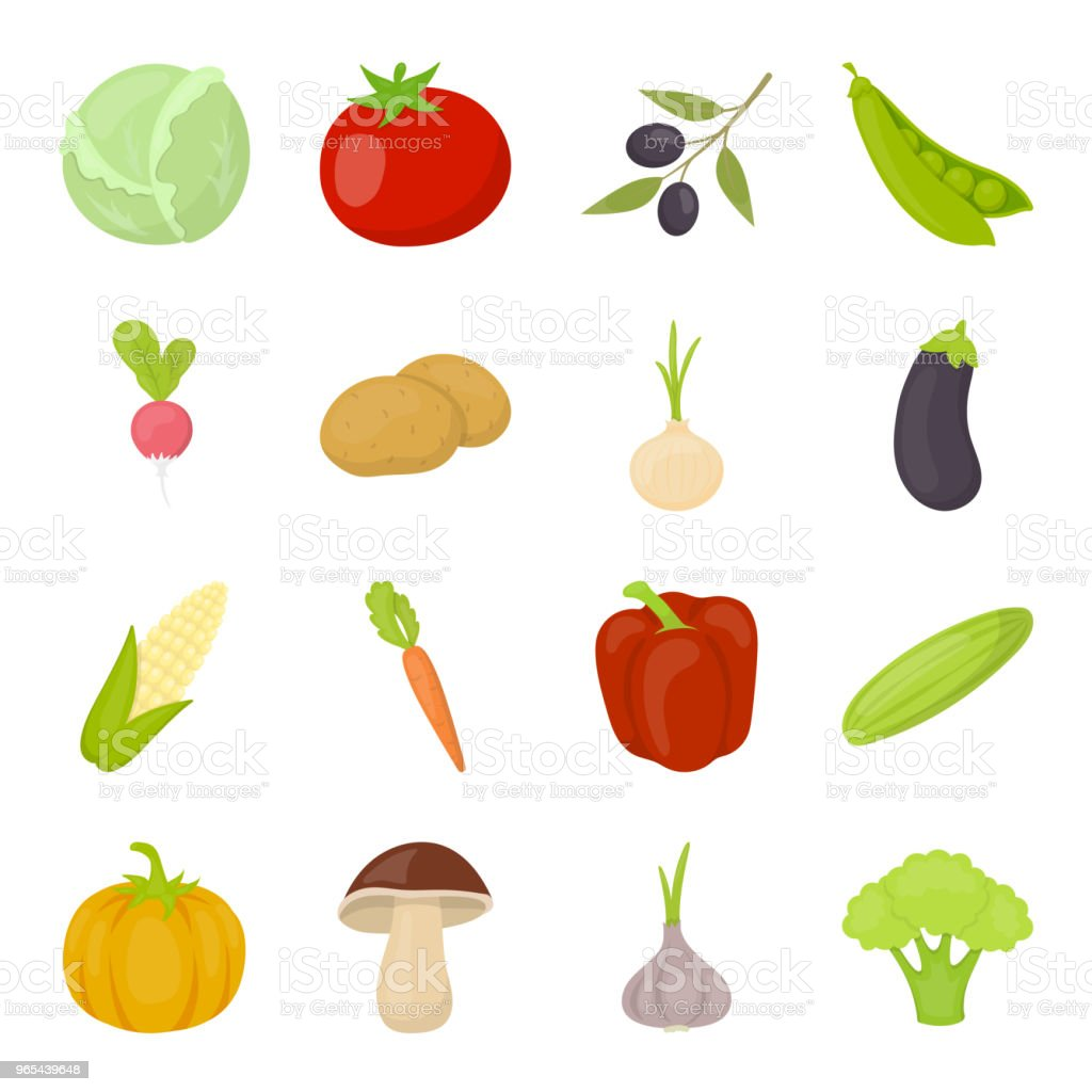 Different kinds of vegetables cartoon icons in set collection for design. Vegetables and vitamins vector symbol stock web illustration. different kinds of vegetables cartoon icons in set collection for design vegetables and vitamins vector symbol stock web illustration - stockowe grafiki wektorowe i więcej obrazów bakłażan royalty-free