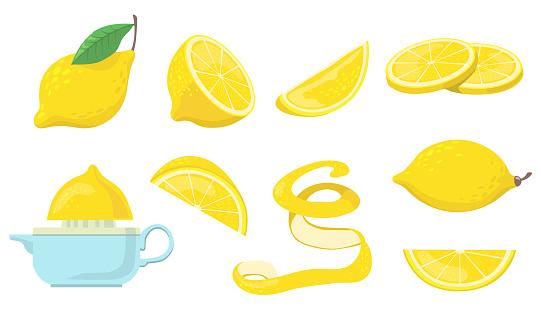 Different lemon pieces flat item set