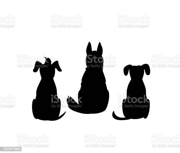 Different mixed breed dogs backside view silhouettes isolated vector vector id1022675902?b=1&k=6&m=1022675902&s=612x612&h=tk1ts2jup 0ziu5si4hu9n7jjh q4ugayeezynieysk=