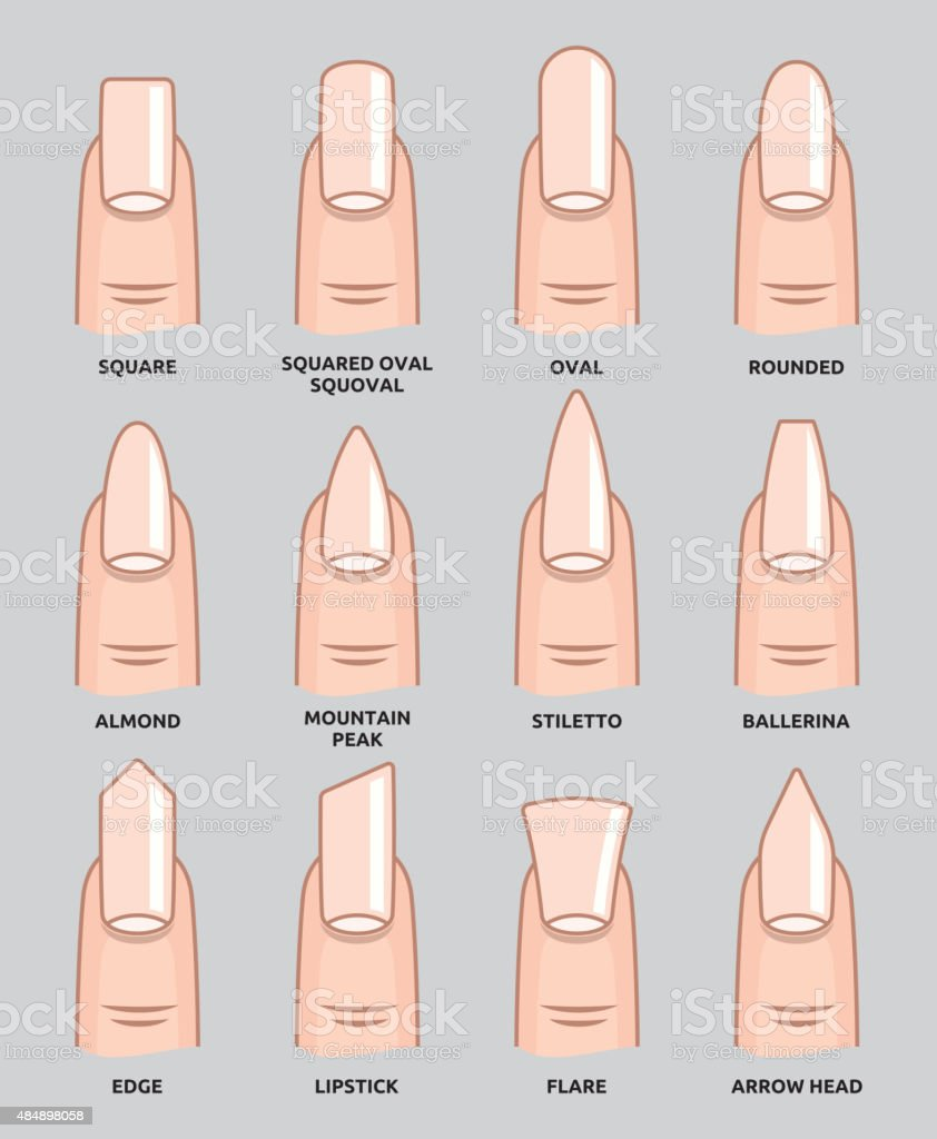 Different Nail Shapes Fingernails Fashion Trends Stock Vector Art ...