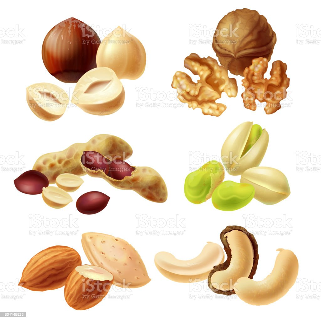 Different nuts realistic vector set royalty-free different nuts realistic vector set stock vector art & more images of acid