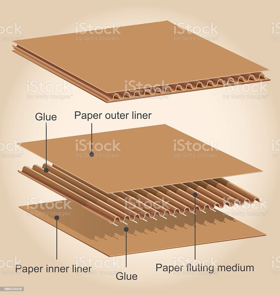 Different parts of a cardboard vector art illustration
