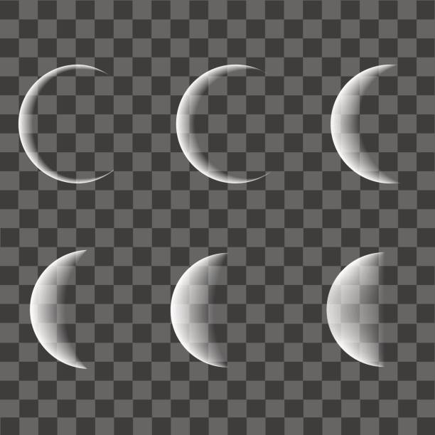 different phases of moon on transparent background. vector. - moon stock illustrations, clip art, cartoons, & icons