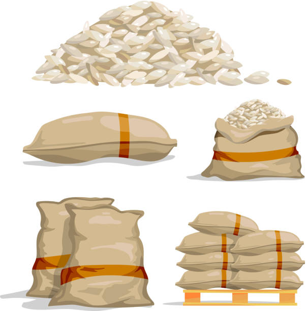 ilustrações de stock, clip art, desenhos animados e ícones de different sacks of white rice. food storage vector illustrations - saco