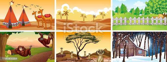 Different scenes with animals and nature illustration