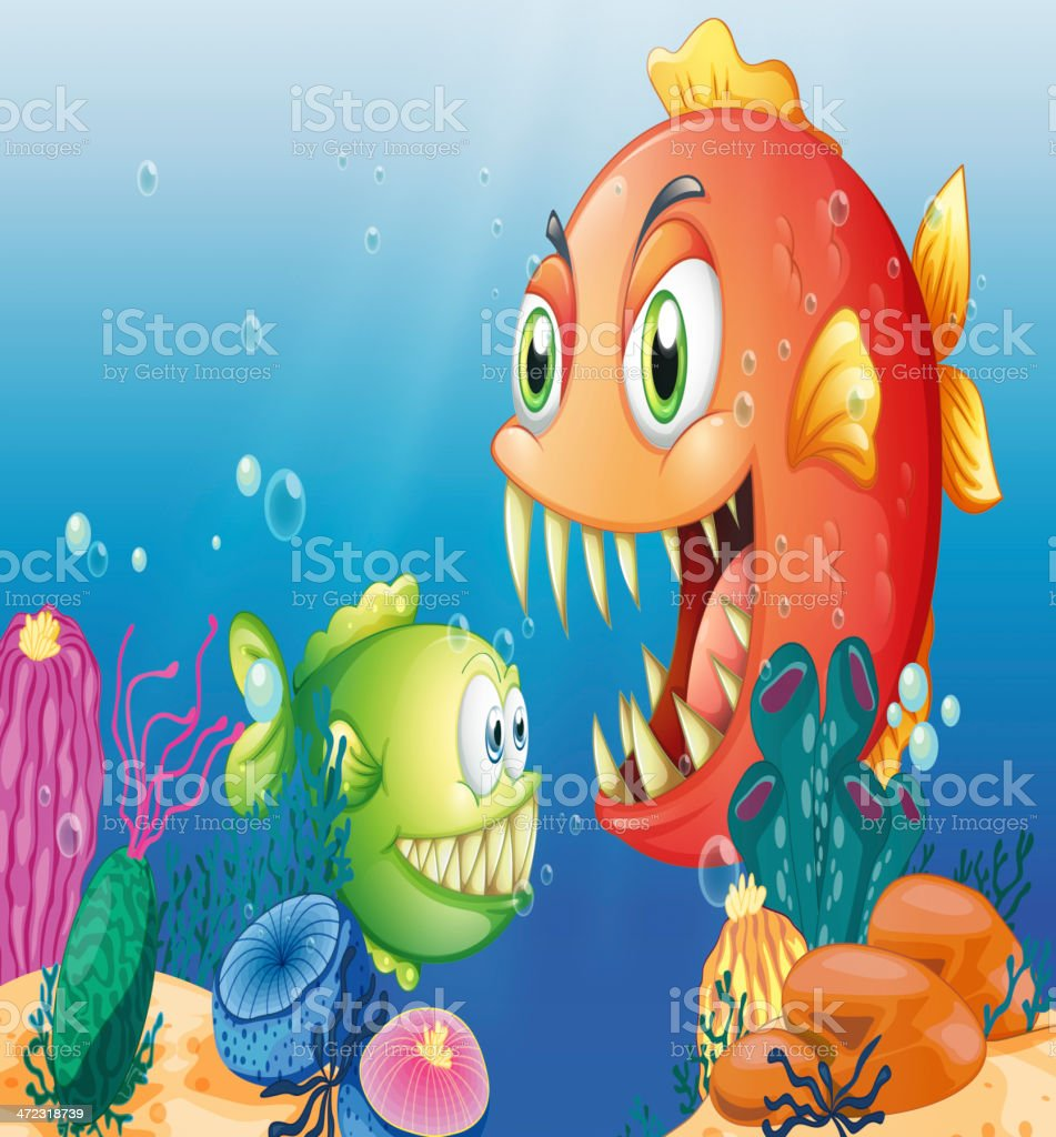 Different sea creatures vector art illustration
