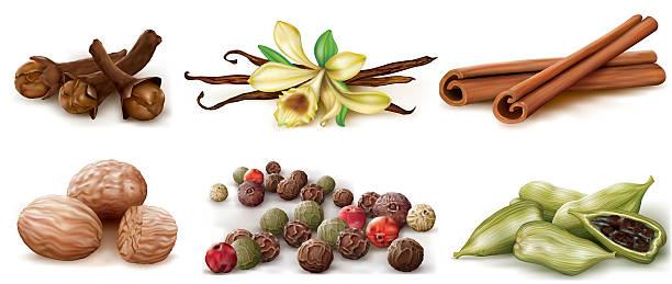 Different spices set Different spices set on white background. Vector Illustration cardamom stock illustrations