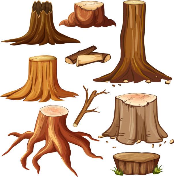 Deforestation Clip Art, Vector Images & Illustrations - iStock
