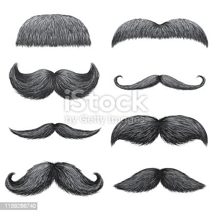 Different styles of male realistic mustaches set. Chevron, Dali, english, handlebar, imperial, lampshade, painter brush, classic relaxed, thick thin man mustaches isolated