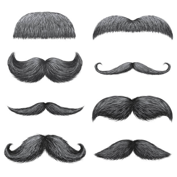Different styles of male realistic mustaches set. Chevron, Dali, english, handlebar, imperial, lampshade, painter brush, classic relaxed, thick thin man mustaches isolated. vector art illustration