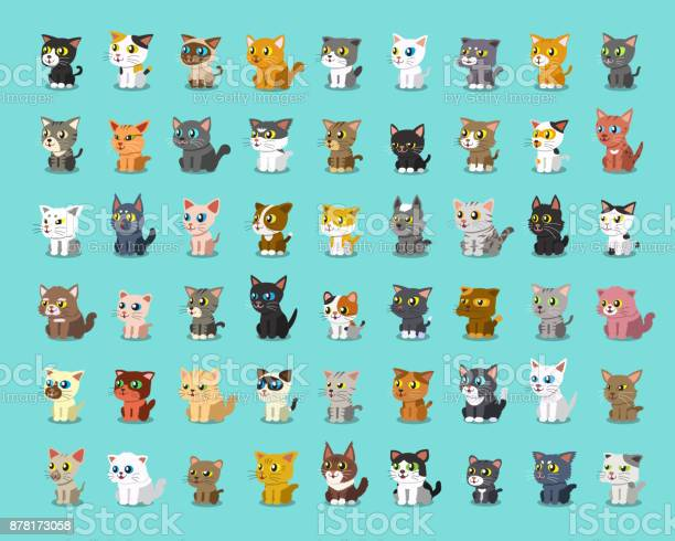 Different type of cartoon cats vector id878173058?b=1&k=6&m=878173058&s=612x612&h=7osbrfmz5nxf6u5a kytlk9jvdvkt9oufya9hp3qf g=