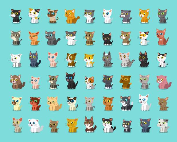 漫画猫の種類 - 子猫点のイラスト素材/クリップアート素材/マンガ素材/アイコン素材