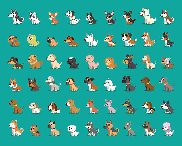 Different type of cartoon dogs - ilustración de arte vectorial