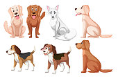 A different type of dog breed illustration
