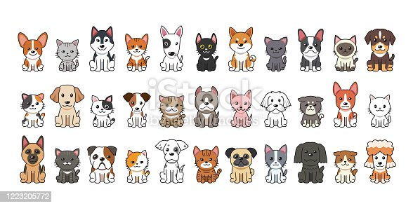 Different type of vector cartoon cats and dogs