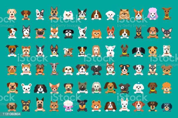 Different type of vector cartoon dog faces vector id1131060604?b=1&k=6&m=1131060604&s=612x612&h= jk5nsfe0xizug5nipe2yqotkdla50bdkly7a bvpqm=