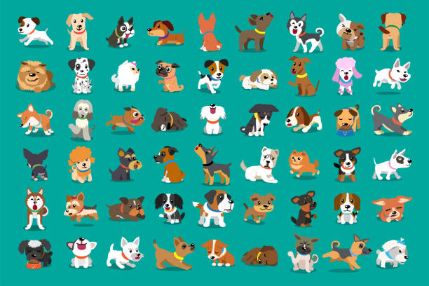 Different type of vector cartoon dogs Different type of vector cartoon dogs for design. dog stock illustrations