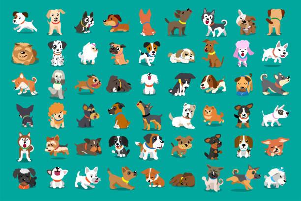 różne rodzaje psów z kreskówek wektorowych - dog stock illustrations