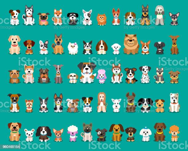 Different type of vector cartoon dogs vector id960465154?b=1&k=6&m=960465154&s=612x612&h=dpoapsjgb fgqo6 0wsceai9te7sih4ni2ujk7hagj8=