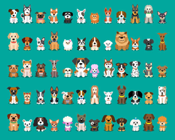 stockillustraties, clipart, cartoons en iconen met ander soort vector cartoon honden - honden