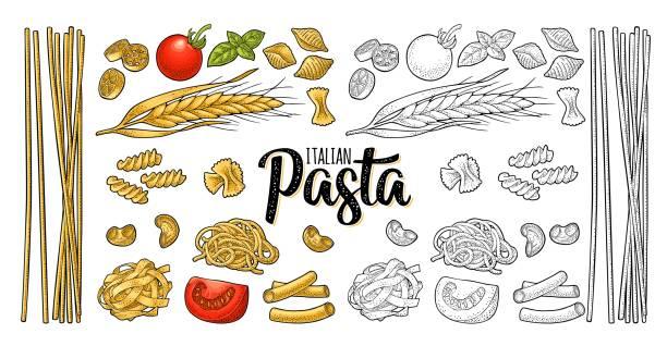 Different types macaroni and ITALIAN PASTA lettering. Vector engraving Different types macaroni and ITALIAN PASTA handwriting lettering. Farfalle, conchiglie, maccheroni, fusilli, penne, pipe, spaghetti, ruote, fettuccine, tomato, wheat. Vector vintage color engraving fusilli stock illustrations