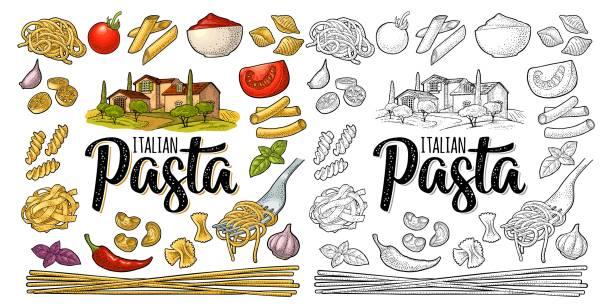 Different types macaroni and ITALIAN PASTA lettering. Vector engraving Different types macaroni. ITALIAN PASTA handwriting lettering. Farfalle, conchiglie, maccheroni, fusilli, penne, pipe, spaghetti, ruote, fettuccine tomato, wheat farm. Vector vintage color engraving penne stock illustrations
