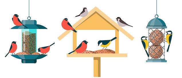 Different types of bird feeders