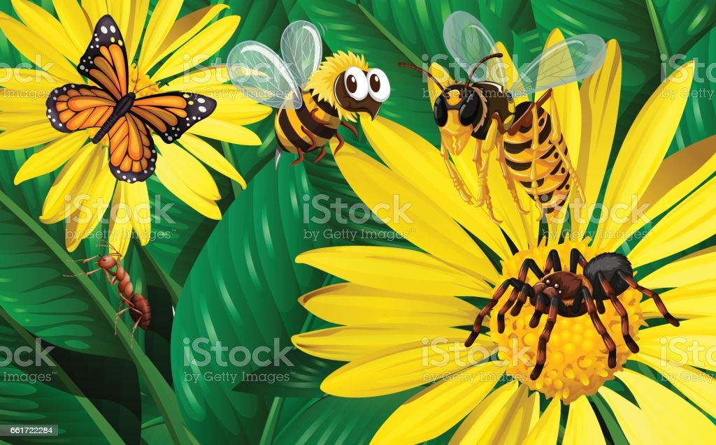 Different types of bugs flying around yellow flowers stock vector different types of bugs flying around yellow flowers royalty free different types of bugs flying mightylinksfo