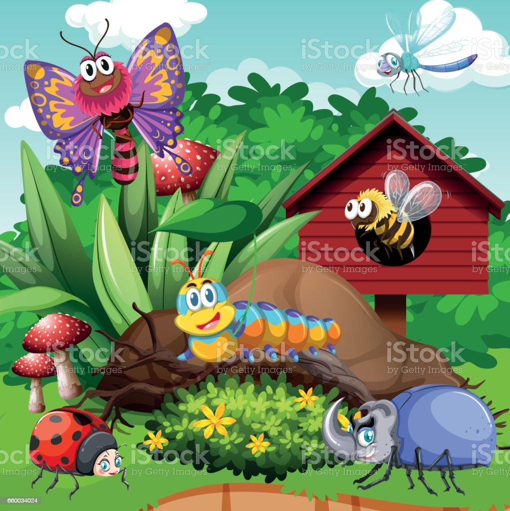 Different types of bugs in garden vector art illustration