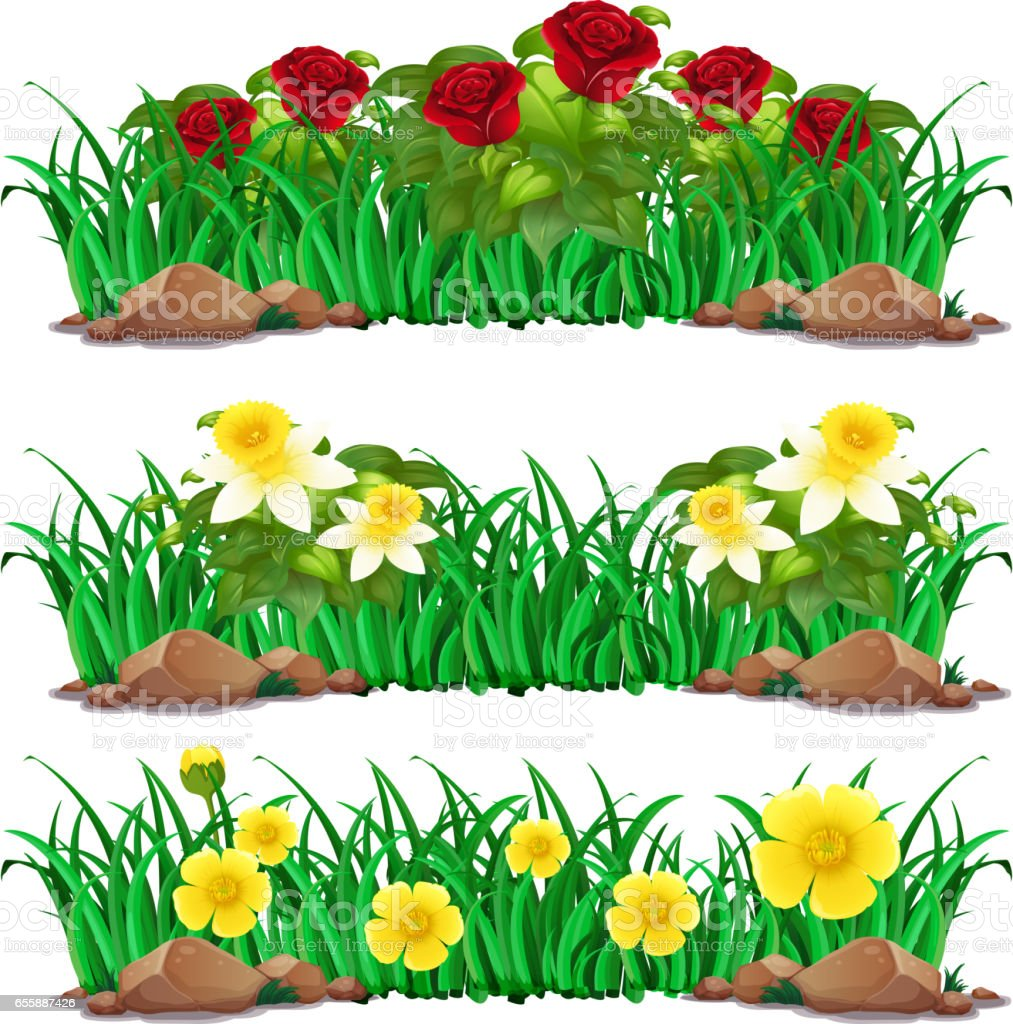 Different Types Of Flowers In Bush Stock Vector Art More Images Of