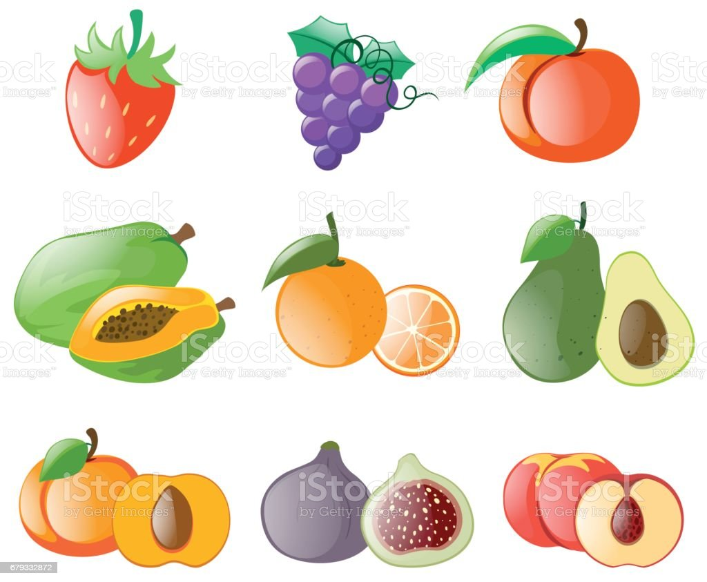 Different types of fresh fruits royalty-free different types of fresh fruits stock vector art & more images of art