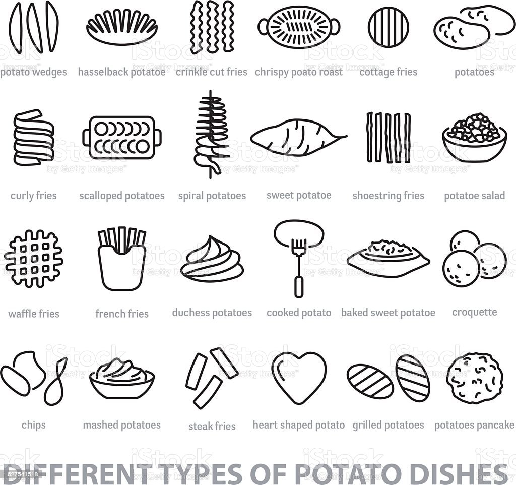 different types of potato dishes vector art illustration
