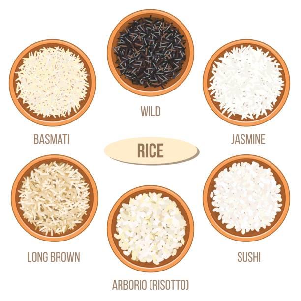 illustrations, cliparts, dessins animés et icônes de différents types de riz dans des bols. basmati, sauvage, jasmin, long brun, arborio, sushi - risotto