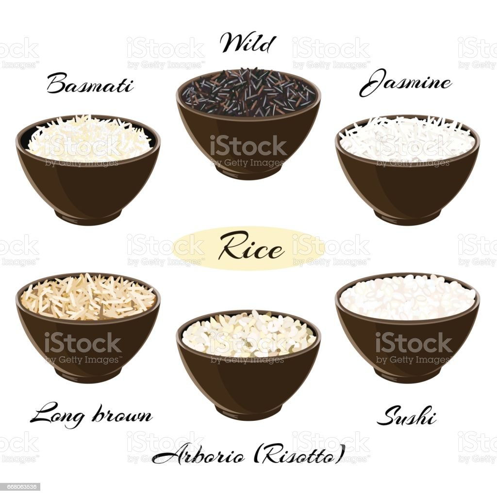 Different types of rice in bowls vector art illustration