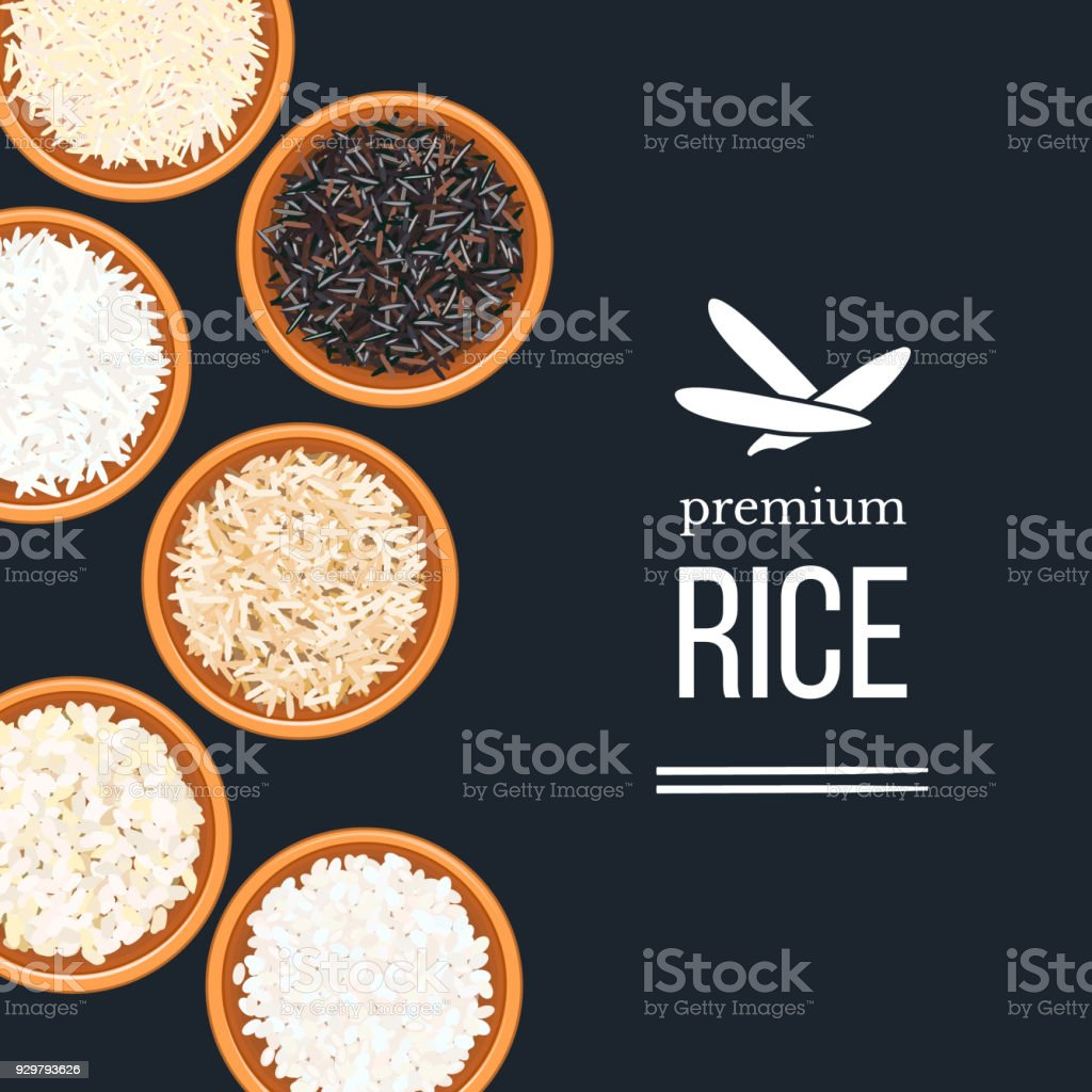 Different types of rice in plates and bowls on dark background. top veiw. Basmati, wild, long brown, arborio, sushi. vector art illustration