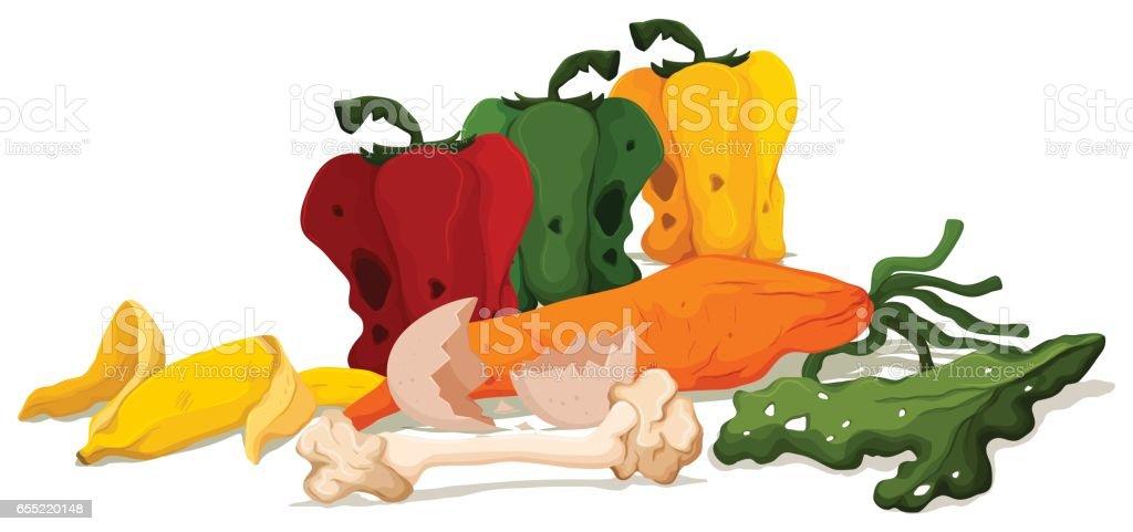 Diferentes tipos de vegetais podres - ilustração de arte em vetor