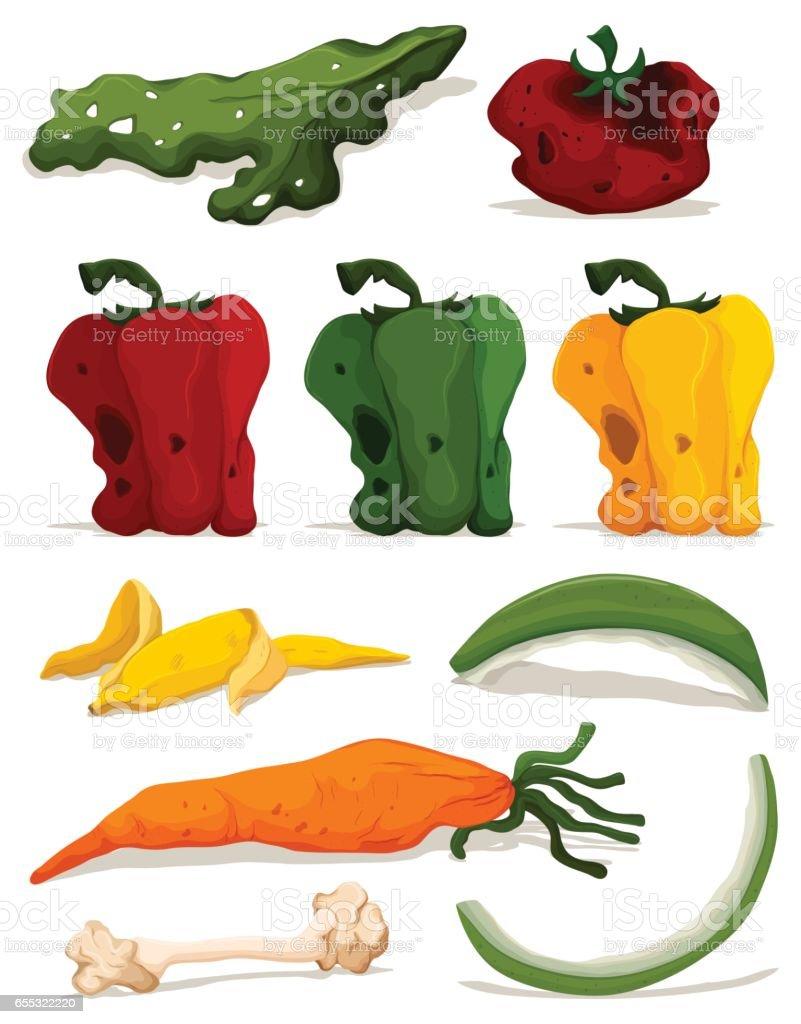 Different types of rotten vegetables vector art illustration