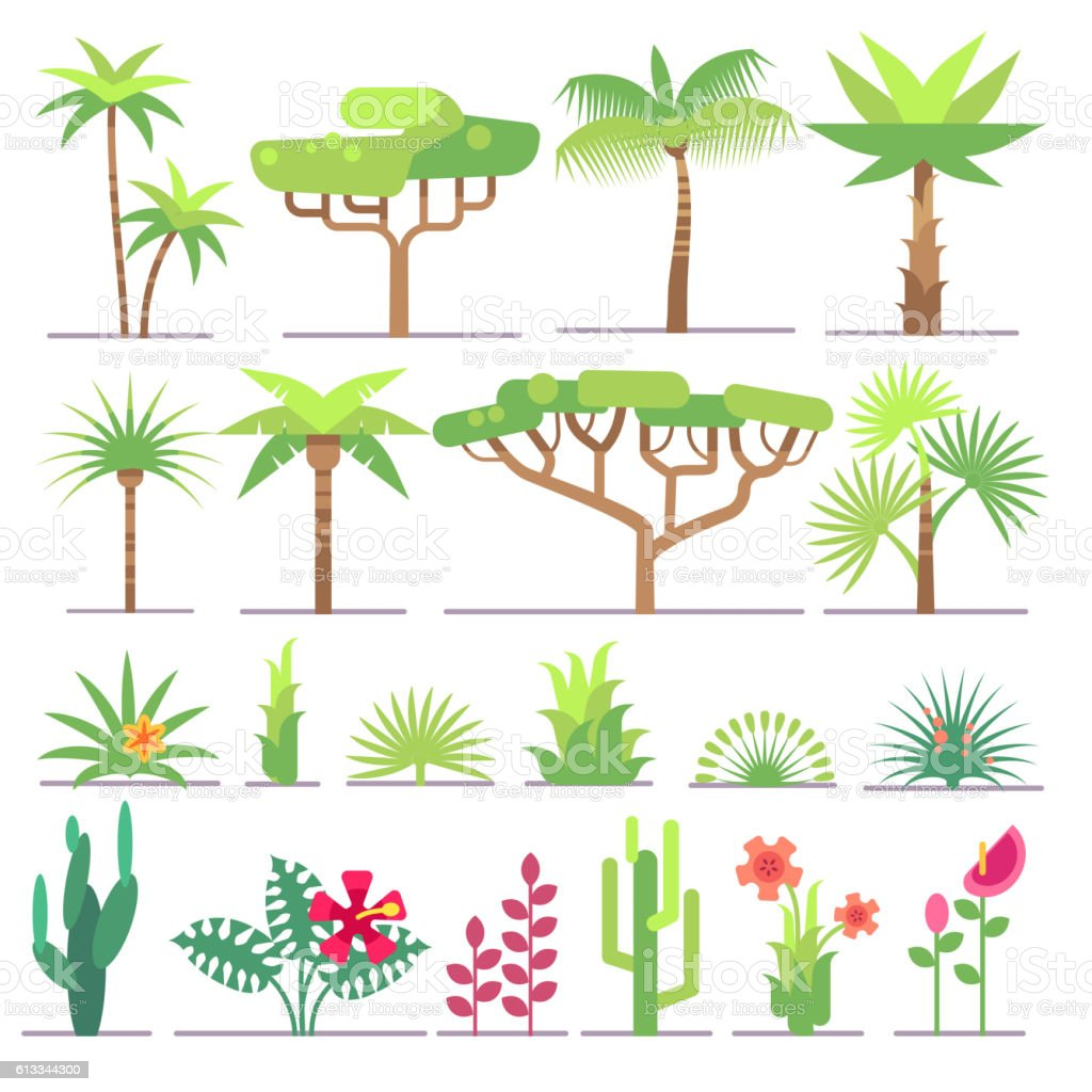 Different Types Of Tropical Plants Trees Flowers Flat Vector