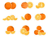 Vector illustration of nine different variants of oranges