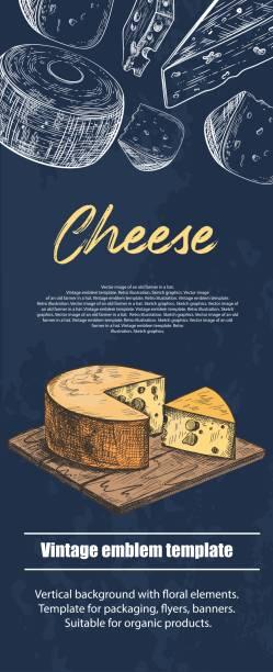 illustrazioni stock, clip art, cartoni animati e icone di tendenza di different varieties of cheese. vintage. food. background for flyers, banners, posters. - maasdam