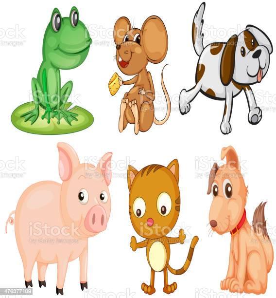 Differrent kinds of land animals vector id476377109?b=1&k=6&m=476377109&s=612x612&h=fe4xinudveb09hl hnq64t8i 4a  zo0odf1kgbuym4=